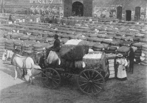 Freed slaves preparing cotton for delivery to England