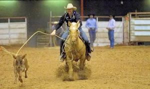Roping a steer at a rodeo
